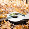 Bulletin météo pour guitares & basses